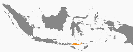 map-indonesia-flores